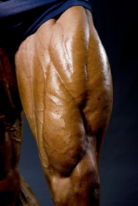 Big_Quadriceps